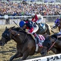 Belmont Park Race Track : Belmont Park Racetrack Free Picks